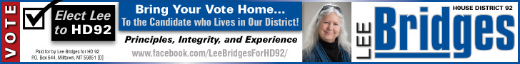 Vote for Lee Bridges for HD 92!